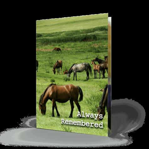 Horses Memorial Card