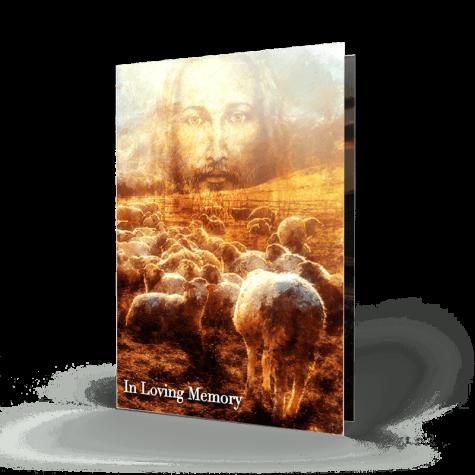 Jesus Lambs