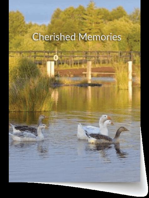 Kildare memorial cards 2